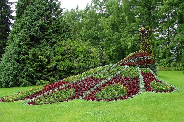 peacock_garden_design